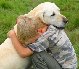 therapeutic benefits of pets